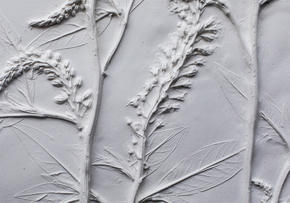 Lysimachia Large Botanical Cast - Artfest Ontario - Botanical Art By Diane - Botanical Casts
