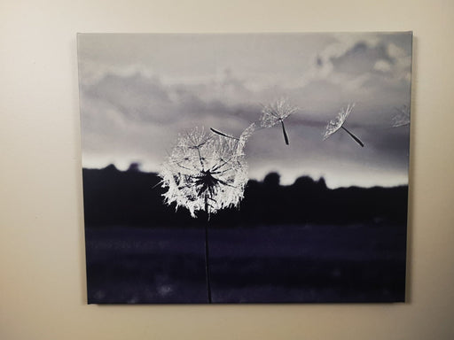 Make A Wish - Artfest Ontario - Loretta Meyer Fine Art Photography - Photographic Art