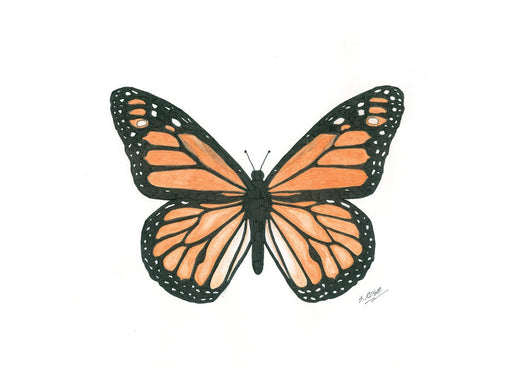 Monarch Butterfly (Male) - Artfest Ontario - Inspirational Artistry Steve Rose Artist - Paintings -Artwork - Sculpture
