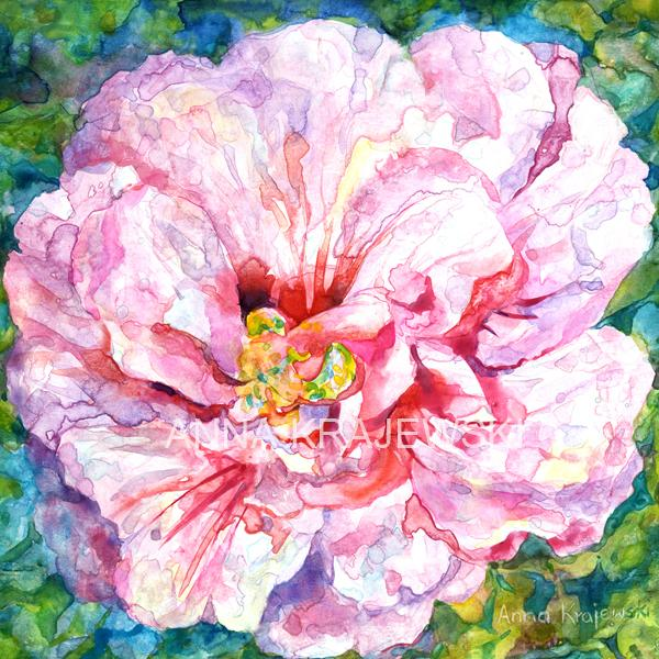 PINK ROSE - Artfest Ontario - Anna Krajewski - Paintings