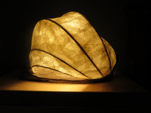 Roll With It Feel the flow? - Artfest Ontario - Aurora Light Sculptures - Furniture & Houseware