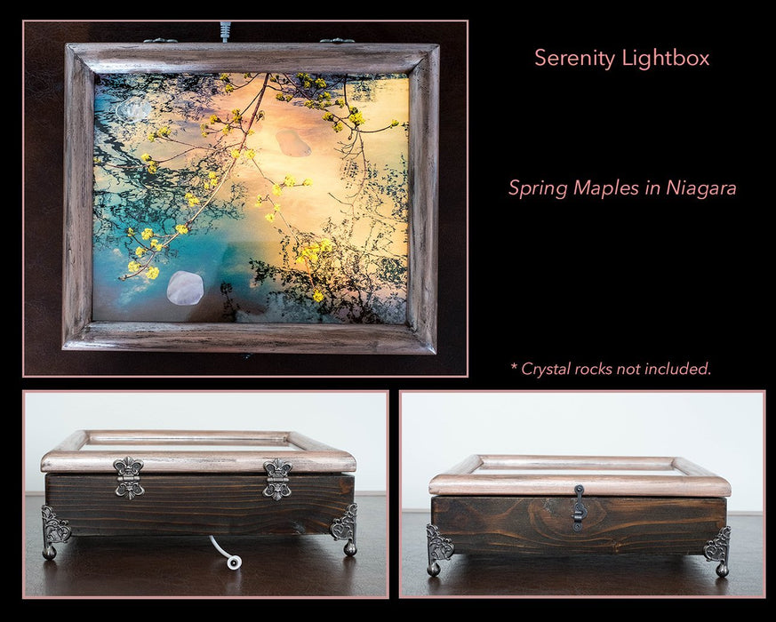 Serenity Box - Spring Maple in Niagara - Artfest Ontario