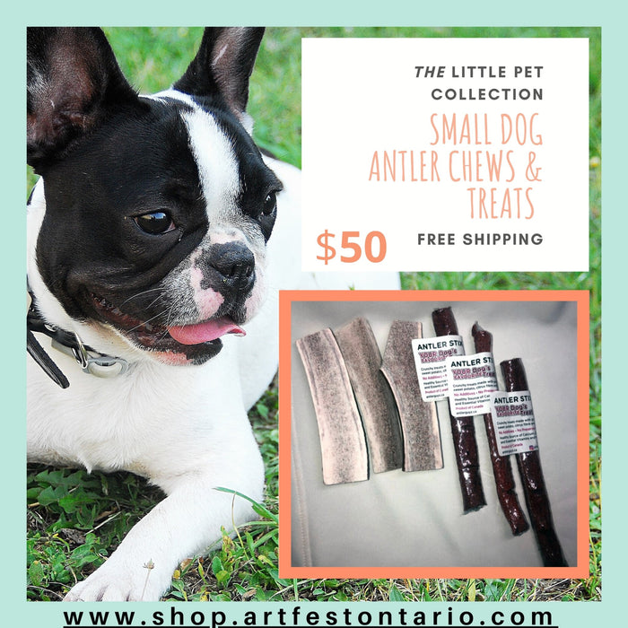 The Little Pet Chew & Treat Collection - Artfest Ontario - Antler Guyz - Pet Products