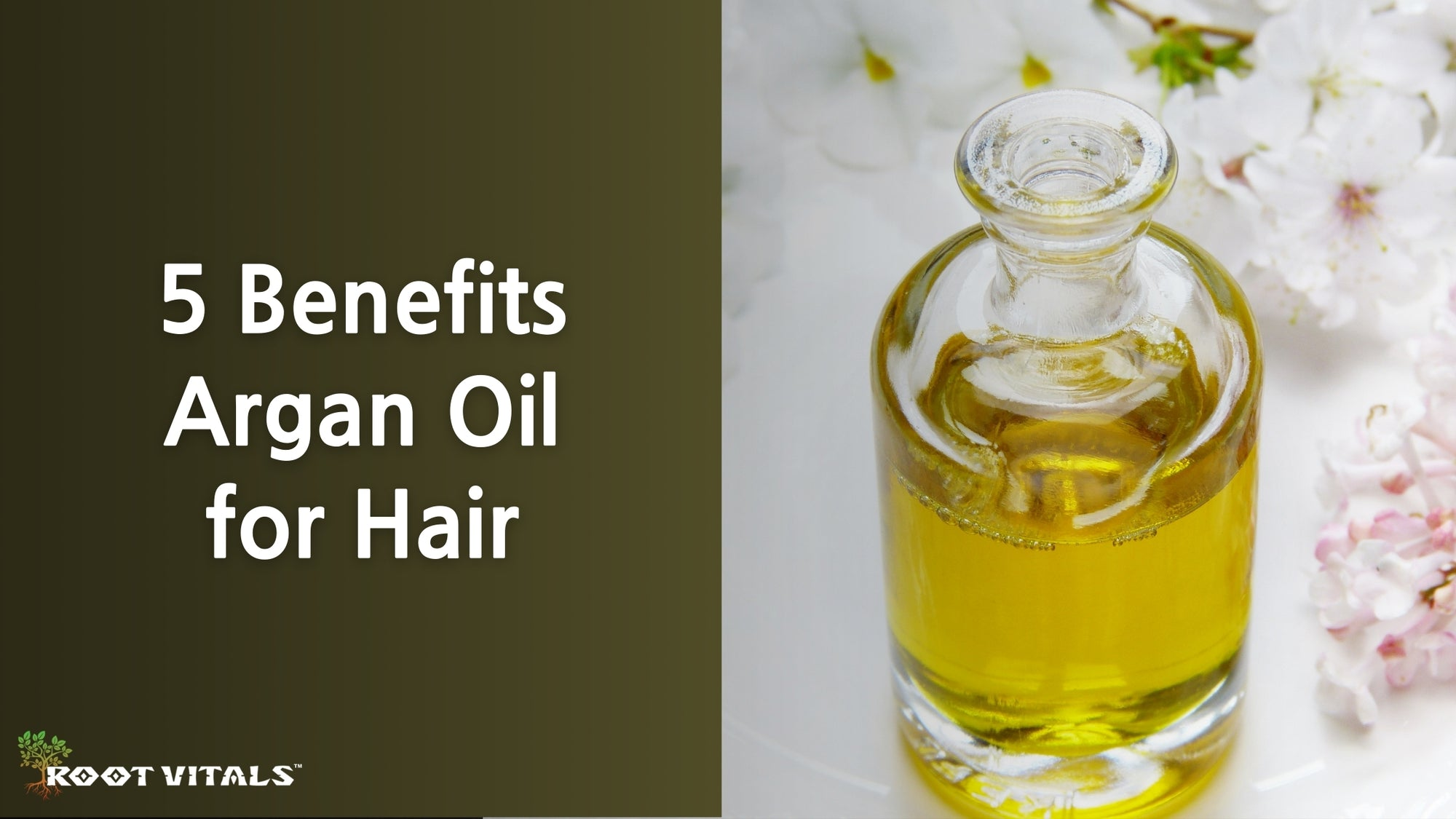Argan oil for hair benefits to help hair grow strong and healthy
