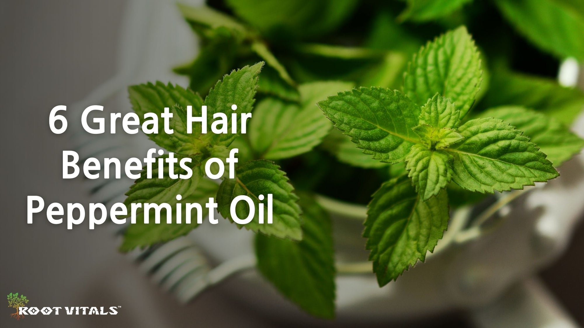 Great Hair Benefits of Peppermint Oil
