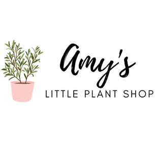 Amy's Little Plant Shop
