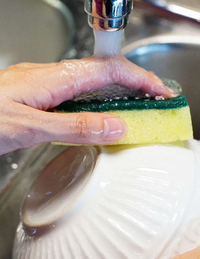 When To Swap Your Kitchen Sponge