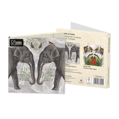 Square Notecard Wallet - Animals Of India