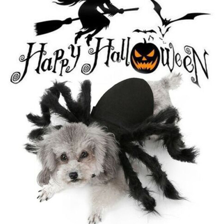 Halloween Spider Costume for Dogs Cats - Big Sale Today(BUY 2 FREE SHIPPING)