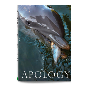 Apology magazine Issue 5. Fall 2019. Photos by Ed Templeton.