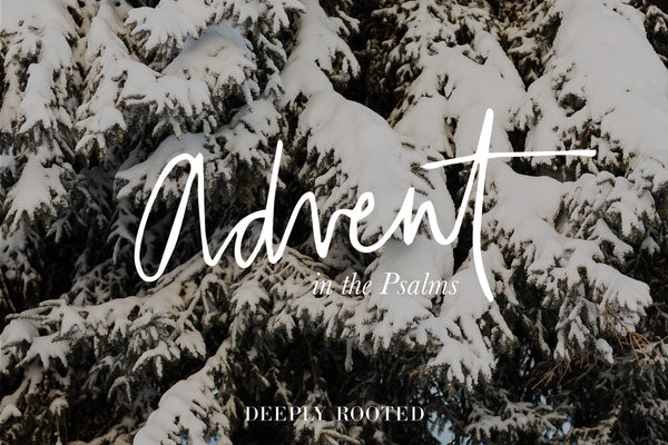 Advent in the Psalms No. 3: Lament (22)