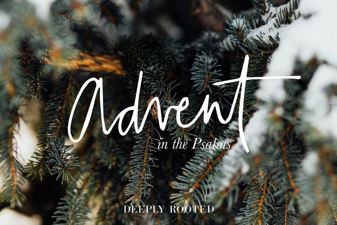 Advent in the Psalms No. 5: Praise (100)