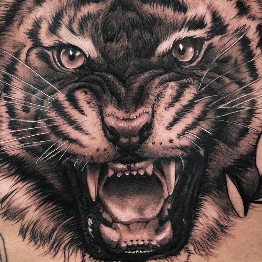 Black ^ Grey Tattoo of a Tiger by Sergio Doce