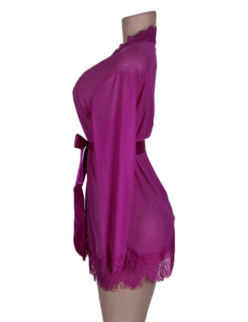 Sheer Lace Trim Purple Robe With Thong