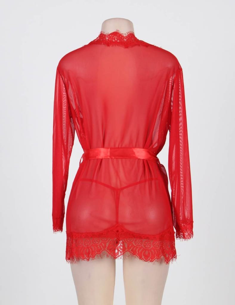 Transparent Lace Robe With Sashes Babydoll