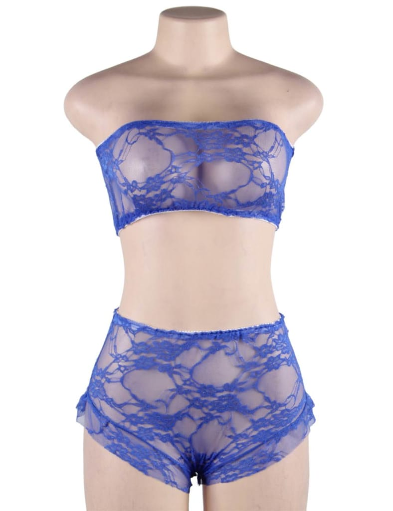 Perspective Sexy Women High Waist Blue Full Lace Bra Panty