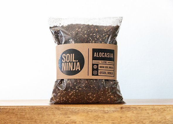 Premium Alocasia Soil Mix