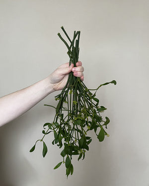 Open image in slideshow, Mistletoe Bunch