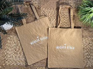 Decorative Paper Gift Bag (to give your friends beer in)