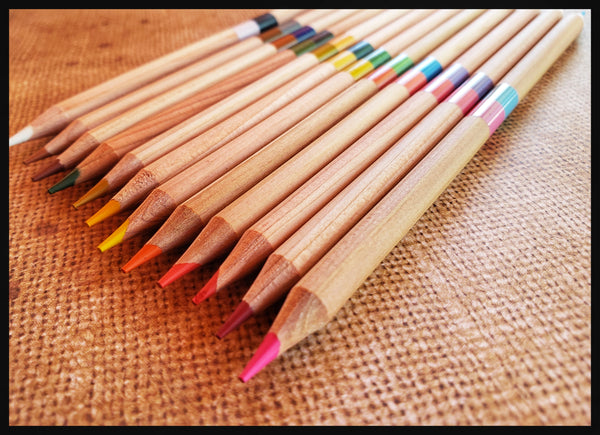 "12 pencils, double sided 24 bright colors  3.5"" x 7"" in box ADA The Gilded Page Santa Fe"