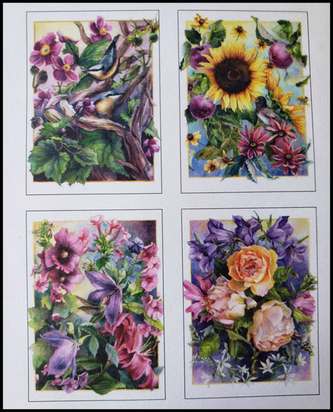"Floral Boxed Cards Variety Artist: Maggie Rutherford   8 BLANK cards & envelopes  2 of each design  4.5"" x 6.5"" ADA The Gilded Page Santa Fe"