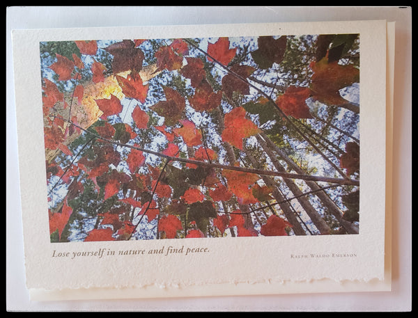 "Lose yourself in nature and find peace - Ralph Waldo Emerson  Inside message: ""May life's blessing be upon you. with deepest sympathy""   Printed on recycled paper with soy based ink  5.5"" x 7.5"" with envelope  ADA the gilded page Santa Fe"