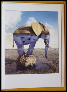 "Abstract elephant standing on rock, elephant is filled with water and fish BLANK INSIDE   FSC certified paper card and envelope   5.5"" x 7.5"" with envelope ADA The Gilded Page Santa Fe"