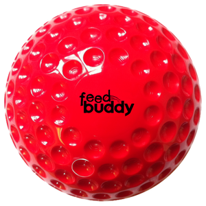 Feed Buddy Balls (6 in pack)