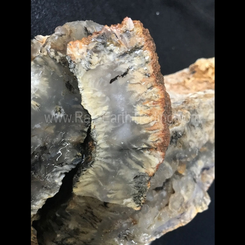 Indonesian Plume Agate Rough. This is a vein material with plumes in white, black and some yellows. Material has very few fractures and polishes well