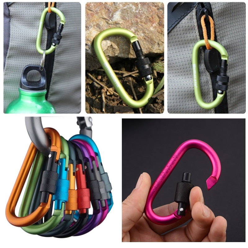 Luxury Aluminum Carabiner clip, D-Ring keychain 2 pcs