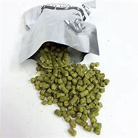 UK East Kent Golding Hops