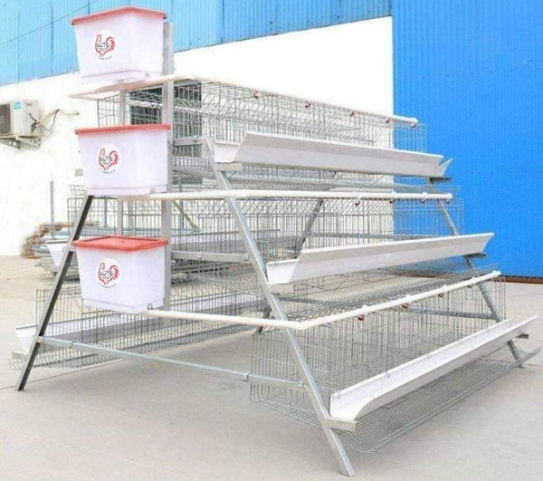 120 Bird Egg Laying Cage