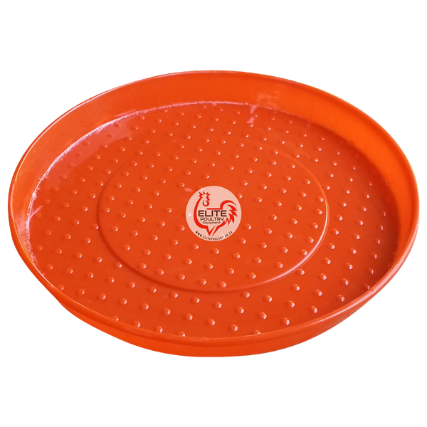 Scratch Feeder Pan for Chicks