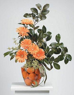 Orange Gerbera & Tangerine Vase Arrangement