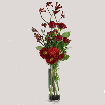 Kangaroo Paw Asters and Roses