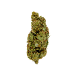 Load image into Gallery viewer, Acapulco Gold Preroll