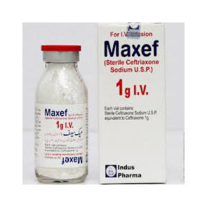 Maxef Injection Iv 1g 1 Vial (Ceftriaxone)