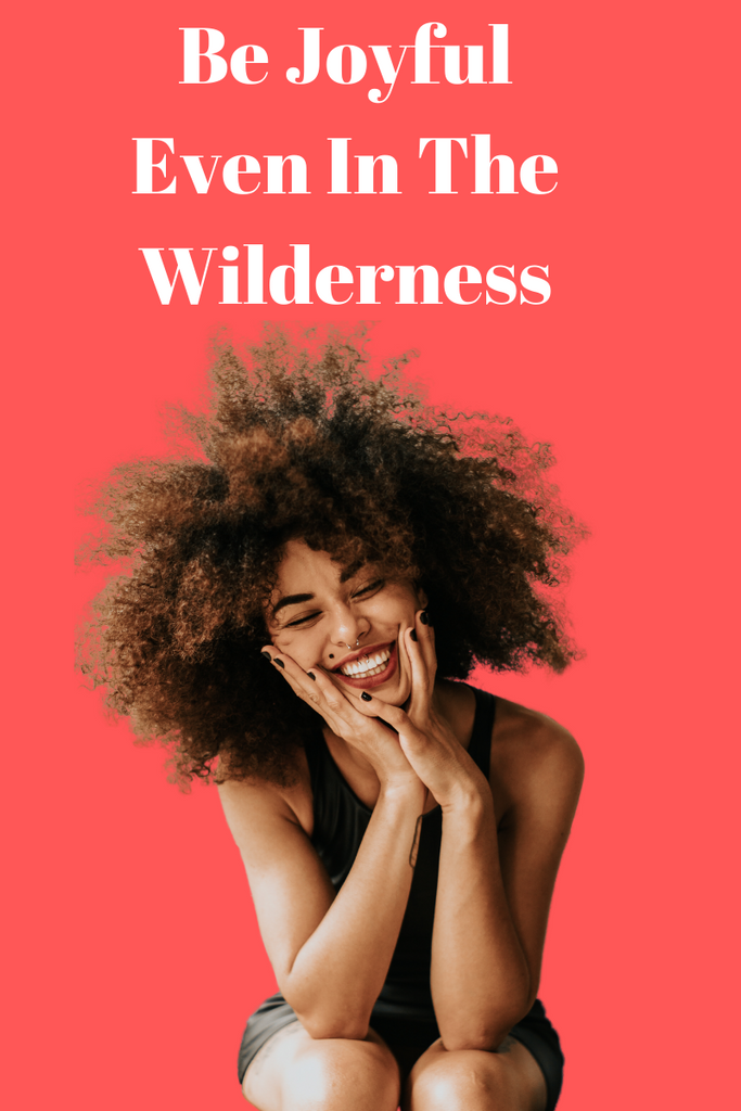 Be Joyful Even In the wilderness // Abundance (Part 3)