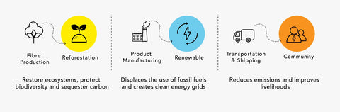 carbon neutrality - sustainable company - supply chain transparency