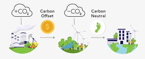 carbon neutrality - supply chain transparency - sustainable company