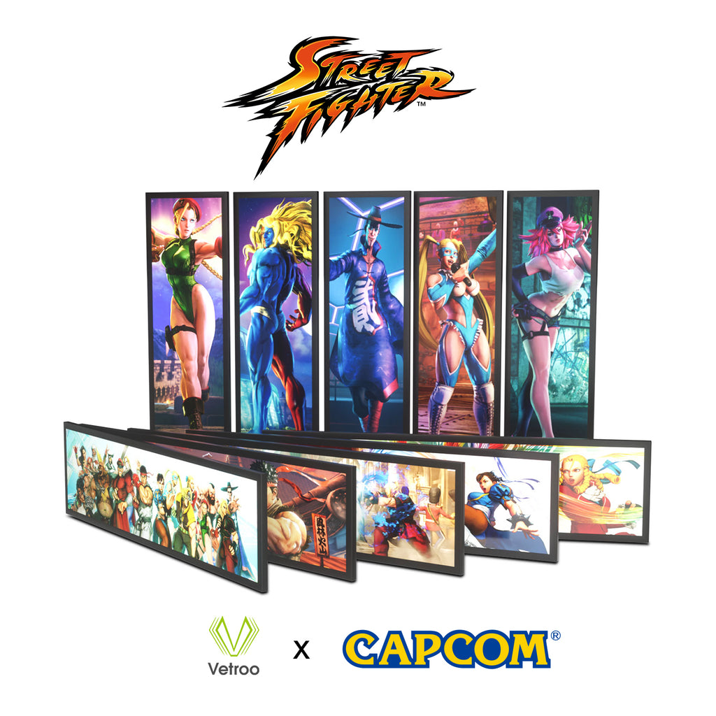Universal Display Panel for PC Case StreetFighter Character Full HD 2K Multi-Mode Function