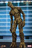 Hot Toys MMS253 Guardians of the Galaxy Groot Figure, 1/6th scale