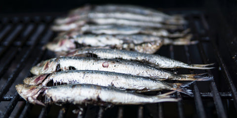 wild oily fish, nuts and seeds