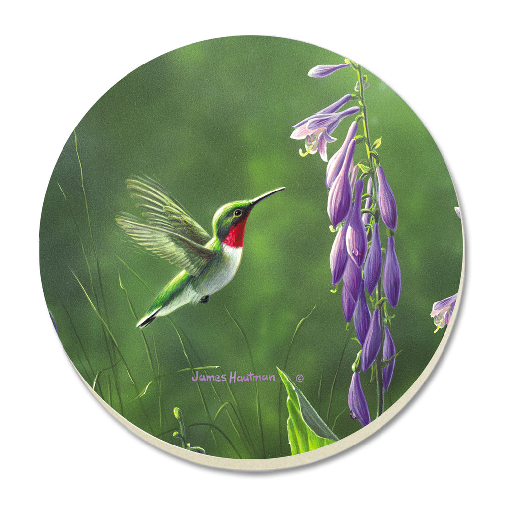 Coasters-Red Hummingbird Hosta