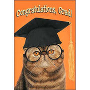 Graduation Card: Hope today finds your feline fabulous and purrfectly proud!