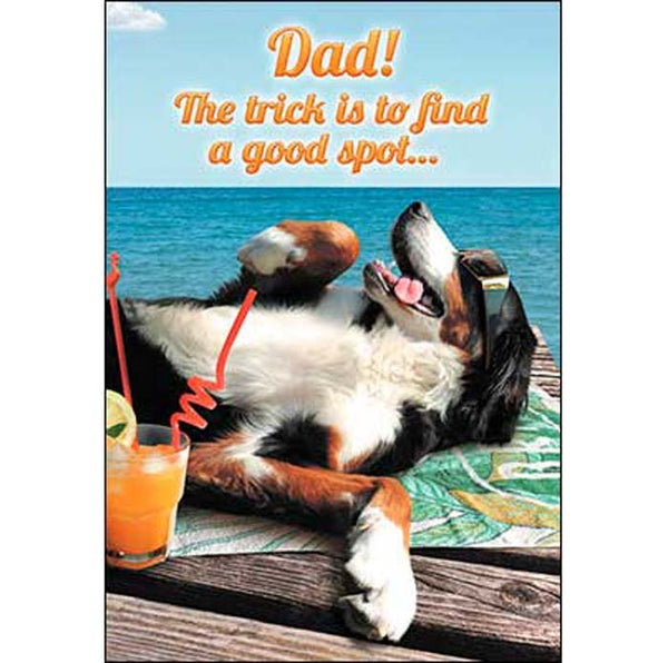 Father's Day Card: Dad!...let everyone else do the fetching!