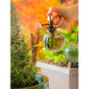 Plant Watering Gift Set, Bulb Glass Smoke