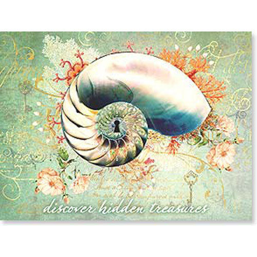 Birthday Card w/Nautilus Shell