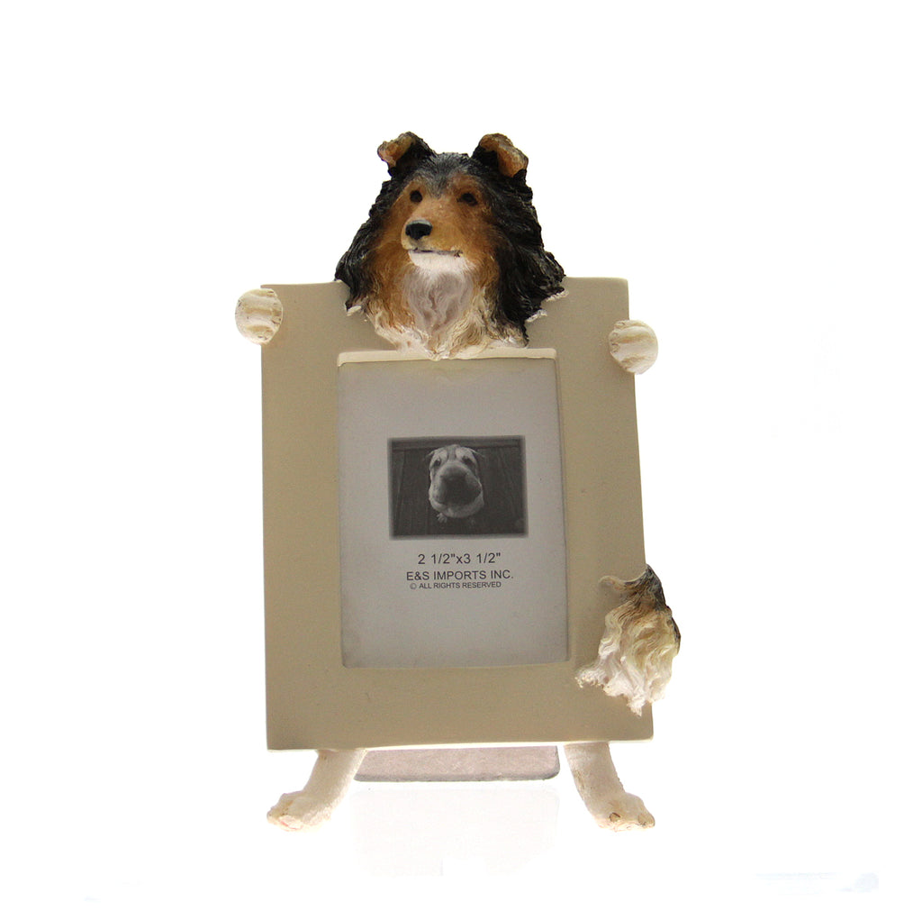 Picture Frame Sheltie