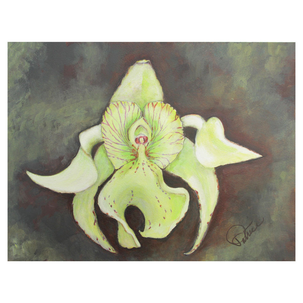 Cymbidium Orchid Painting
